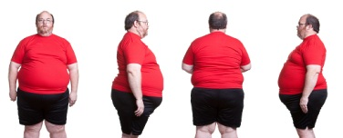 stubborn belly fat profile