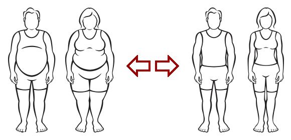 fat versus thin